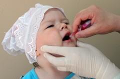 Оральная прививка от полиомиелита